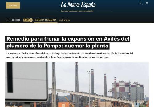 Remedio para frenar la expansión en Avilés del plumero de la Pampa: quemar la planta